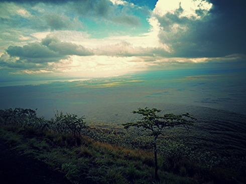 View from the top. If you look really closely, towards the left, you'll see Lake Naivasha