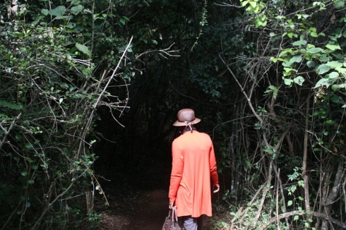 giraffe-centre-nairobi-kenya-13