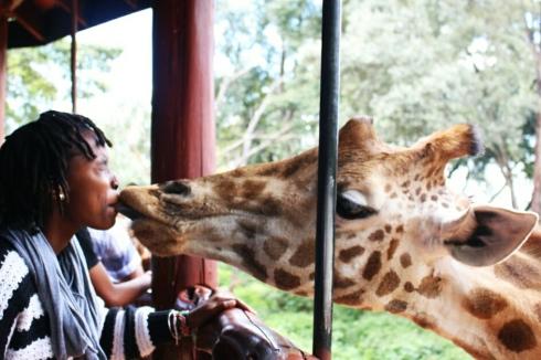 giraffe-centre-nairobi-kenya-8
