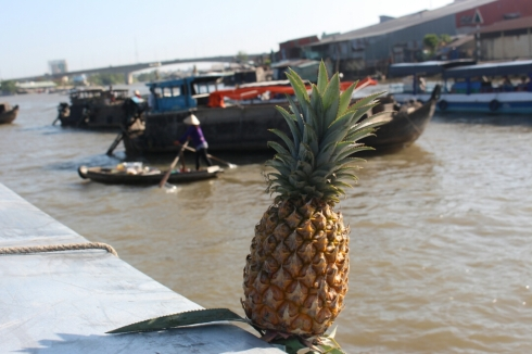 Vietnam-travel-Mekong-Delta-Floating-MArket-2